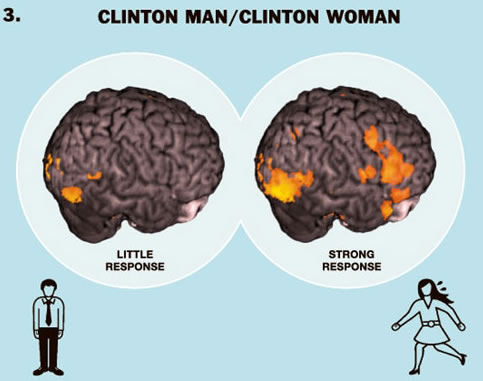 clinton-brains