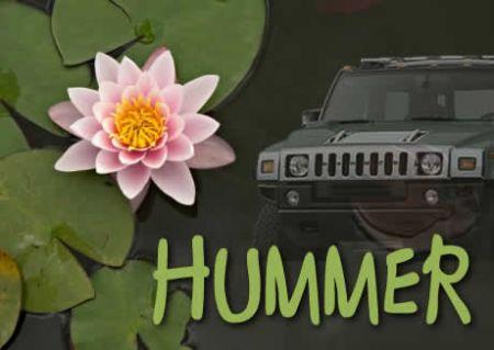 eco_hummer