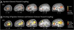 neural-coupling