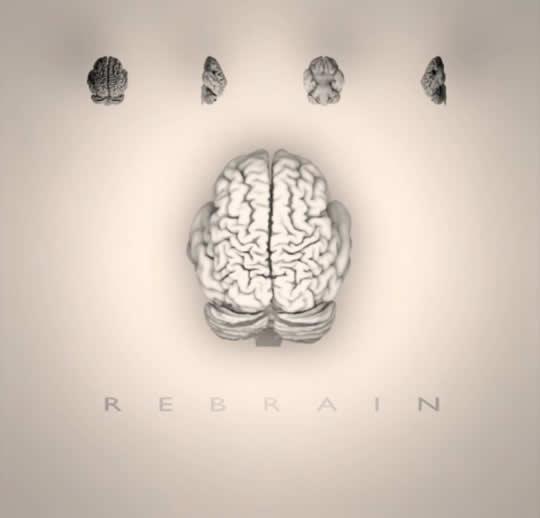 Rebrain by Roberto Toro