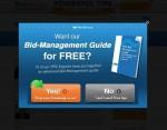 bidmanagementguide-600x470