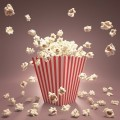 popcorn2-240x240
