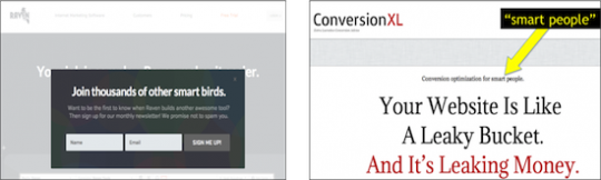 Conversion Optimization Tips - Social Pressure Example 2
