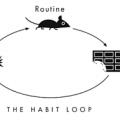 habit_loop